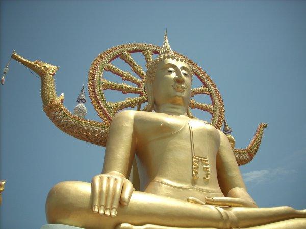 bigbuddha2.jpg
